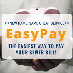 https://www.dgsd.org/wp-content/uploads/2015/07/EasyPay-1-240x240.png