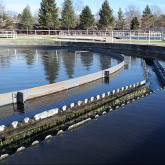 https://www.dgsd.org/wp-content/uploads/Wastewater-Treatment2-e1470861982438-240x240.jpg